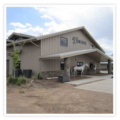 Riding Arena Steel Buildings, Steel building, prefabricated steel